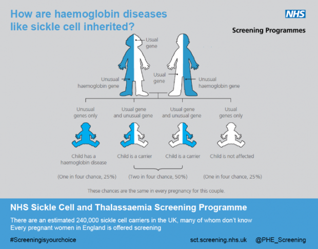 Illustration showing how sickle cell and other haemoglobin diseases are inherited
