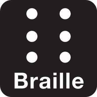The braille logo