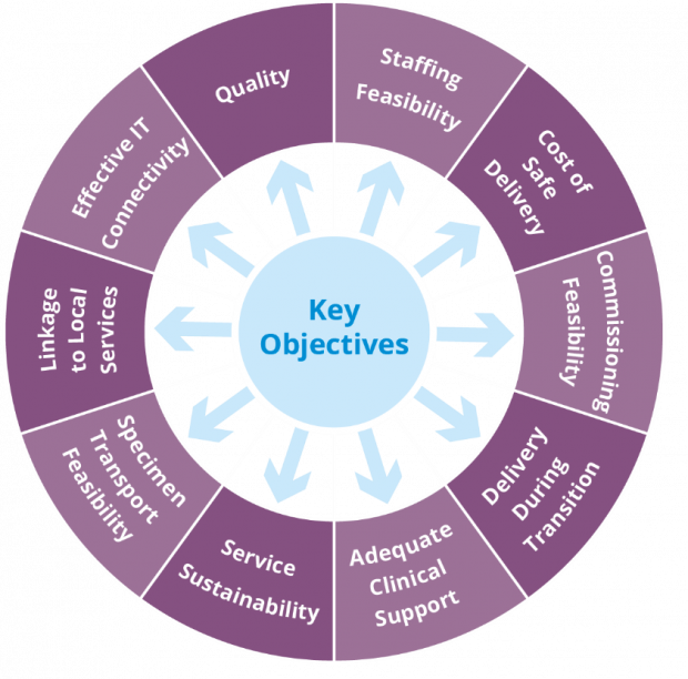 Diagram showing 10 objectives considered and weighted by options appraisal