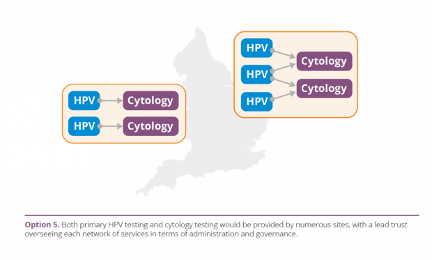 Option 5: Both primary HPV testing and cytology testing would be provided by numerous sites, with a lead trust overseeing each network of services in terms of administration and governance.