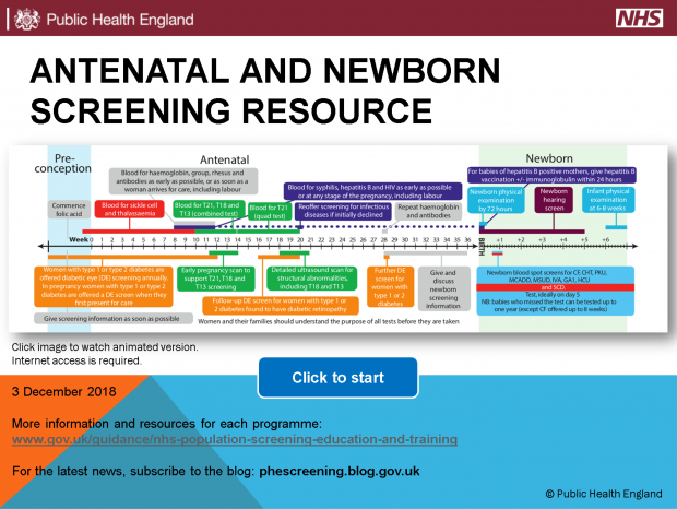 A screen grab of the new online version of PHE's resource cards. The words at the top say 'antenatal and newborn screening resource.' There is a timeline of the various screening tests and when they should be carried out. In smaller text near the bottom it says 'Click image to watch animated version' and 'click to start' inside a blue button.