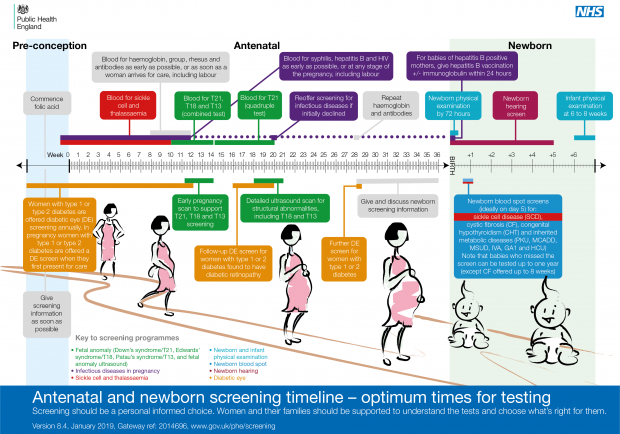 Timeline illustration detailing all the antenatal and newborn screening tests offered to pregnant women and newborn babies. In chronological order they are: diabetic eye screening for pregnant women with diabetes, antenatal sickle cell and thalassaemia screening, infectious diseases in pregnancy screening, fetal anomaly screening, newborn and infant physical examination, newborn blood spot screening and newborn hearing screening,
