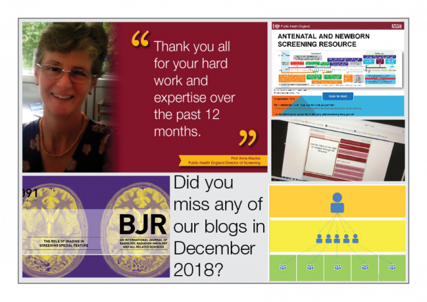 Collage of images from PHE Screening blog articles published during December 2018 and including the words 'Did you miss any of our blogs in December 2018?' and 'Thank you all for your hard work and expertise over the past 12 months'