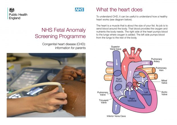 Front cover and page 3 of the NHS fetal anomaly screening programme congenital heart disease information leaflet for patients