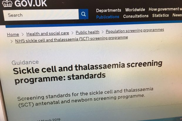 Screen shot of updated sickle cell and thalassaemia screening programme standards on GOV.UK