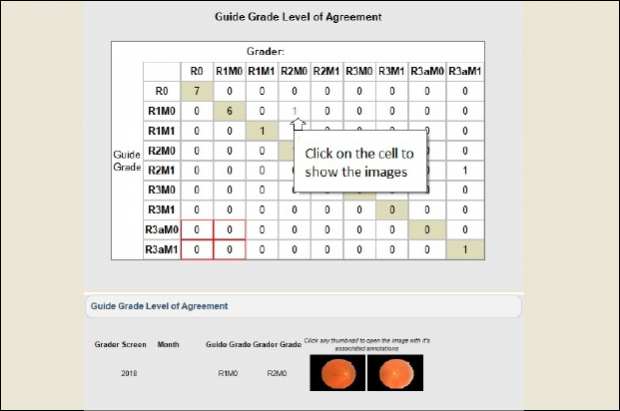 A chart shows the guide grade level of agreement - 2 photos of retinas are at the bottom.
