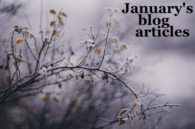 A frost-covered tree in soft focus with the words 'January's blog articles'