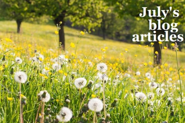 A bright summer field with the words 'July's blog articles'